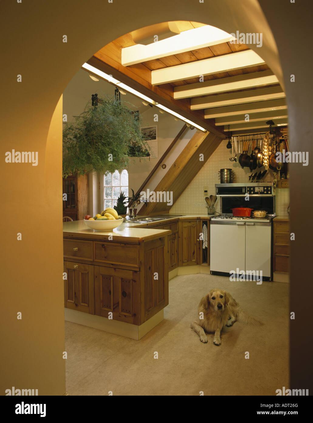 Tolle Kleine Kellerküche Fotos - Küche Set Ideen - deriherusweets.info