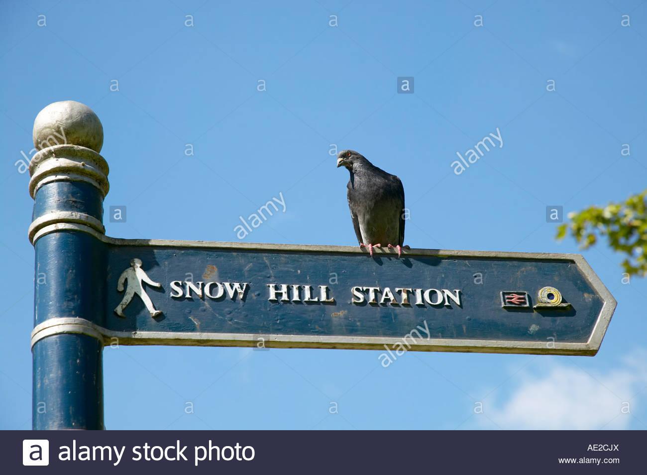 Taube auf Finger Post Richtung Wegweiser nach Snow Hill Station Zentrum von Birmingham England Stockbild