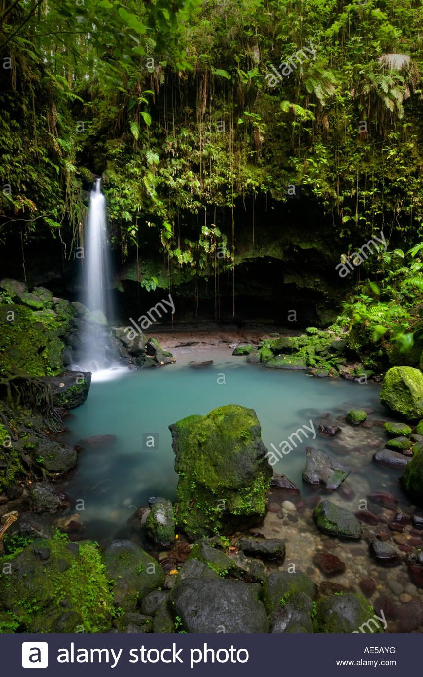 Der emerald pool wasserfall dominica inseln unter dem winde caribbean stockfoto bild - Pool wasserfall ...