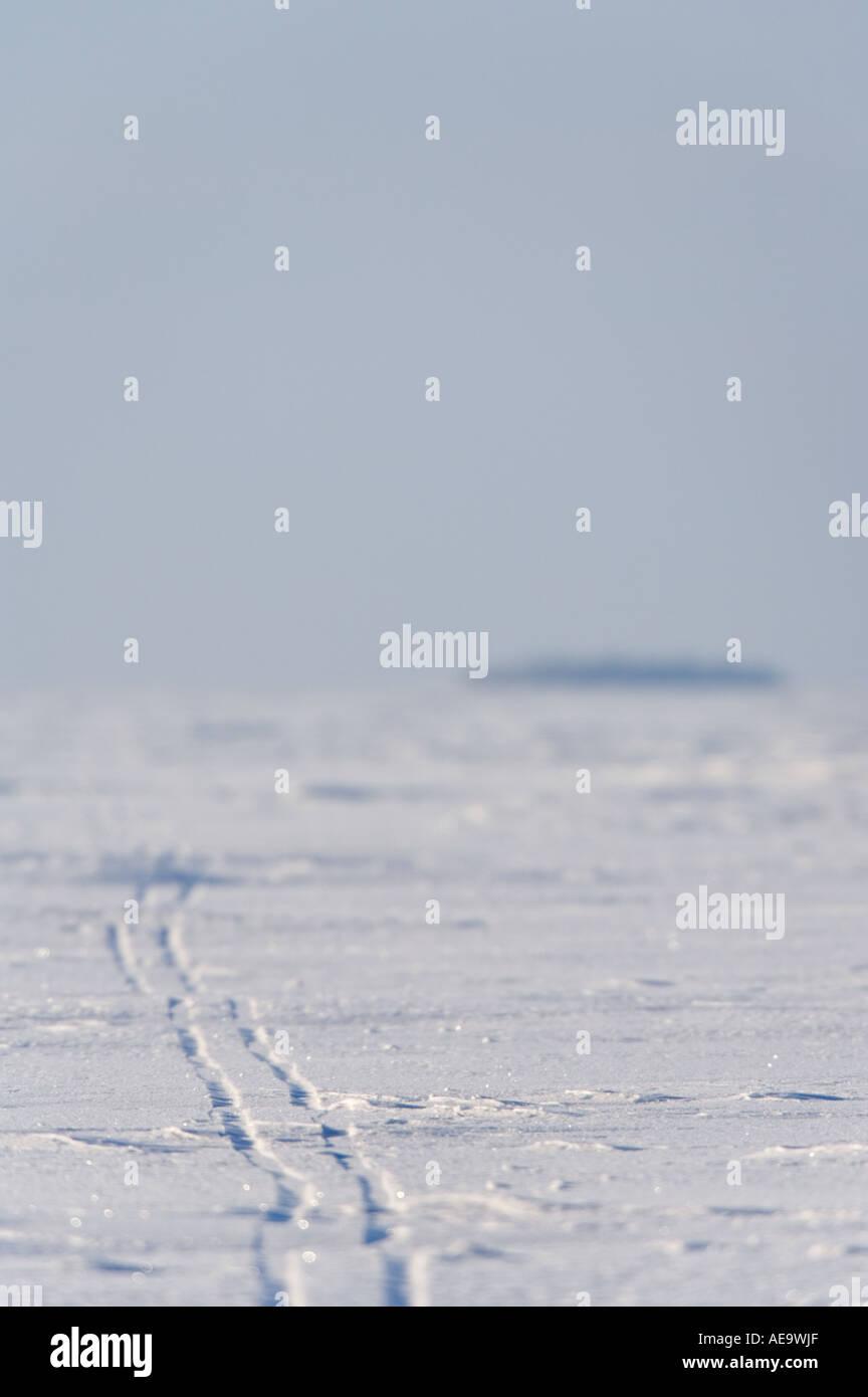 Einsame Loipen verfolgen auf Eisschollen, verschwinden, Entfernung zur Ostsee, der Bottnische Meerbusen, Finnland Stockbild