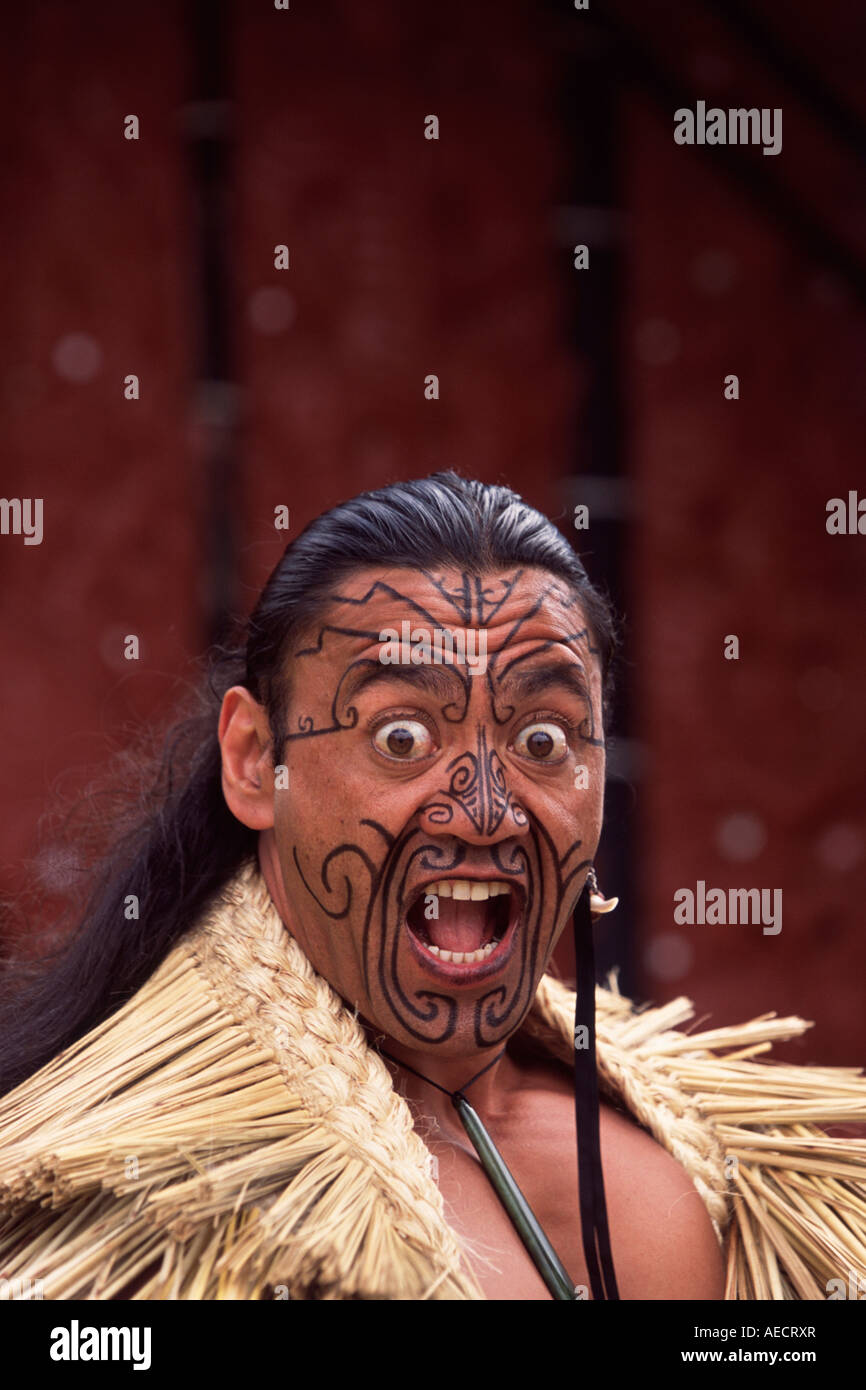 Amazing Maori Krieger Best Choice Of Rotorua, Krieger, Tag