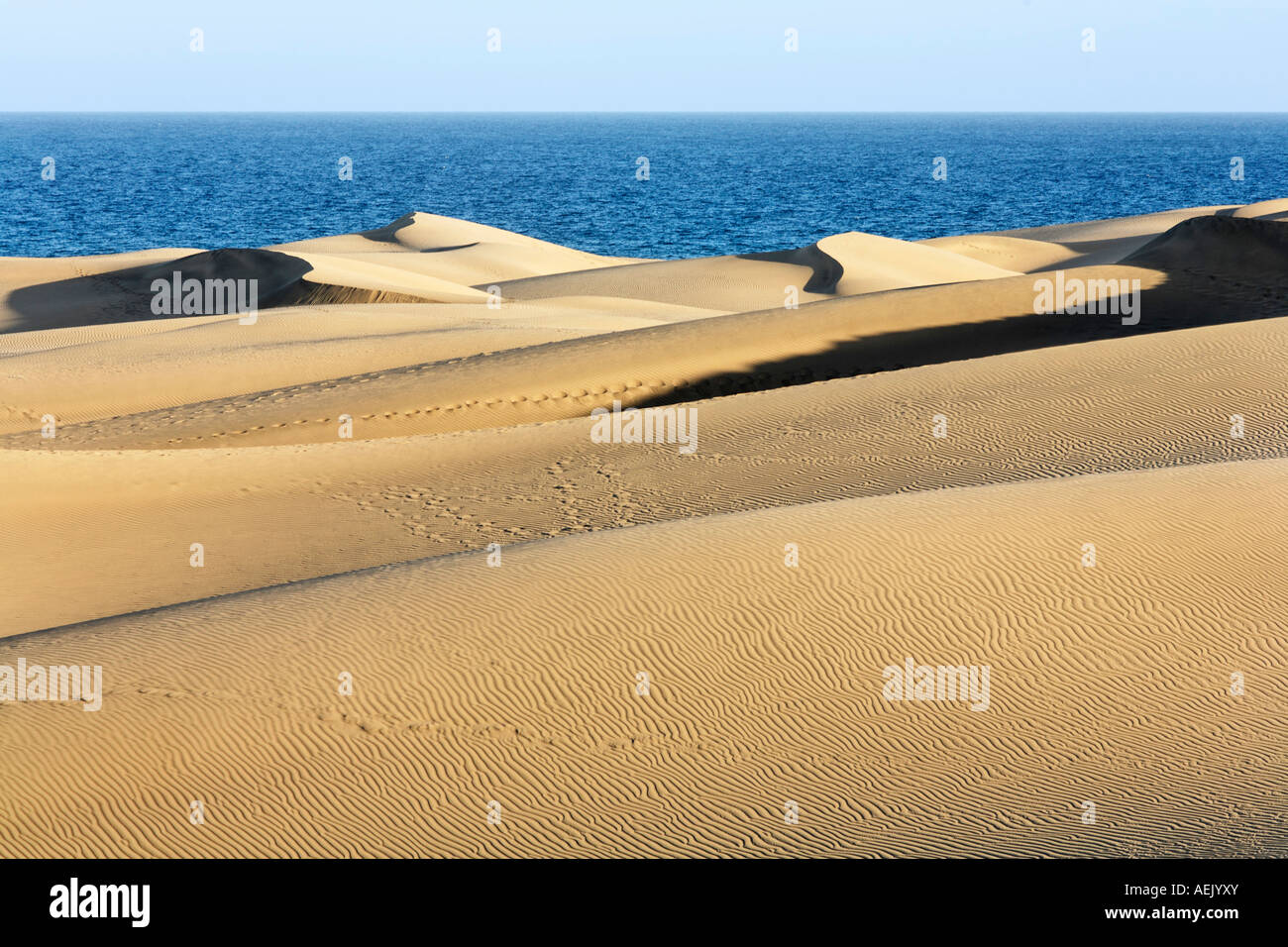 Sanddünen, Maspalomas, Playa del Ingles, Gran Canaria, Spanien Stockbild