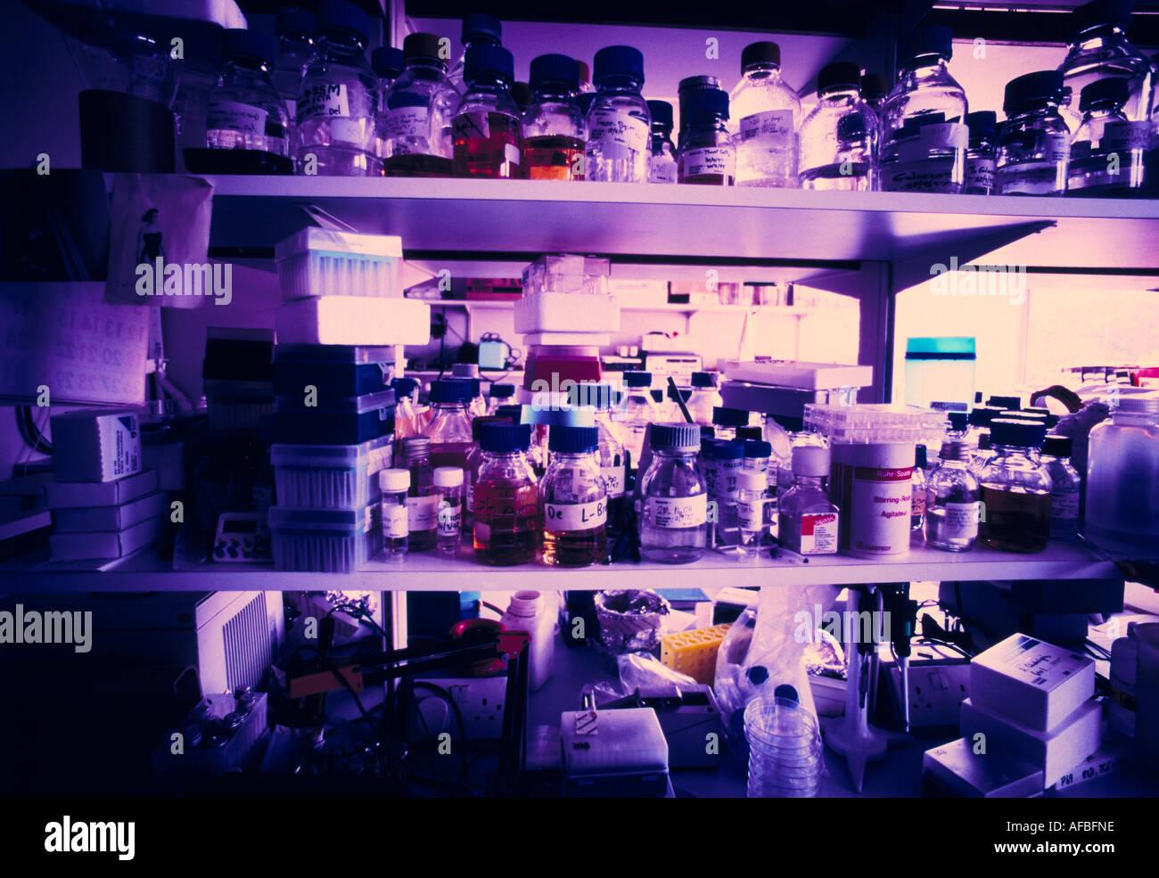 Regalen der pharmazeutischen Flaschen Stockbild