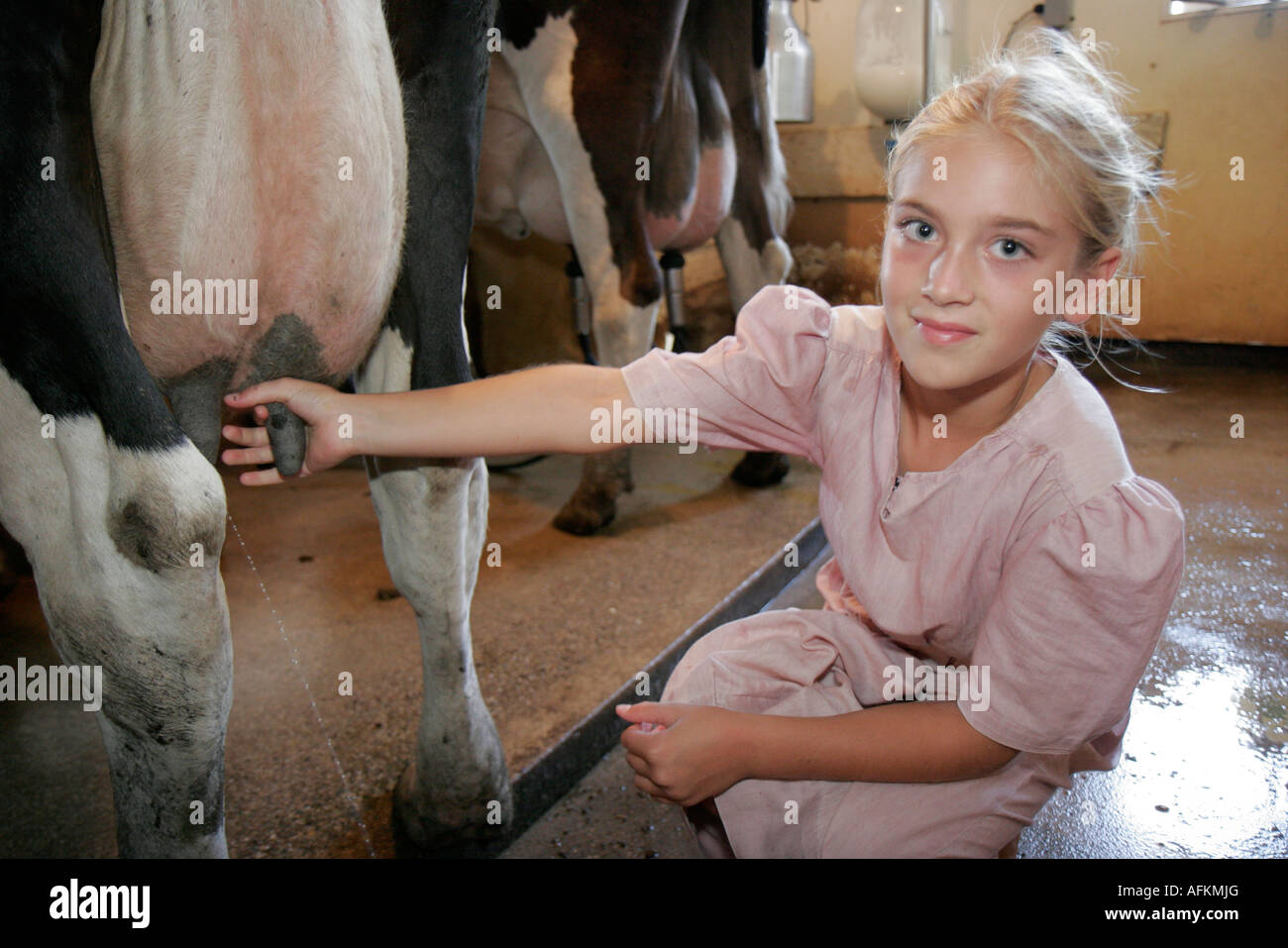 Indiana Shipshewana reisen Amish Farm Tour Mädchen Scheune