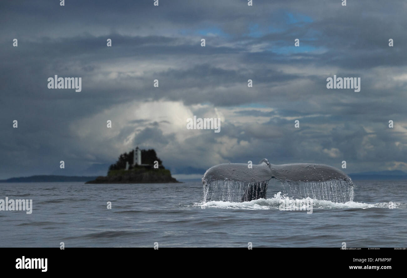 Buckelwal und fünf Finger Leuchtturm Petersberg Alaska Stockbild