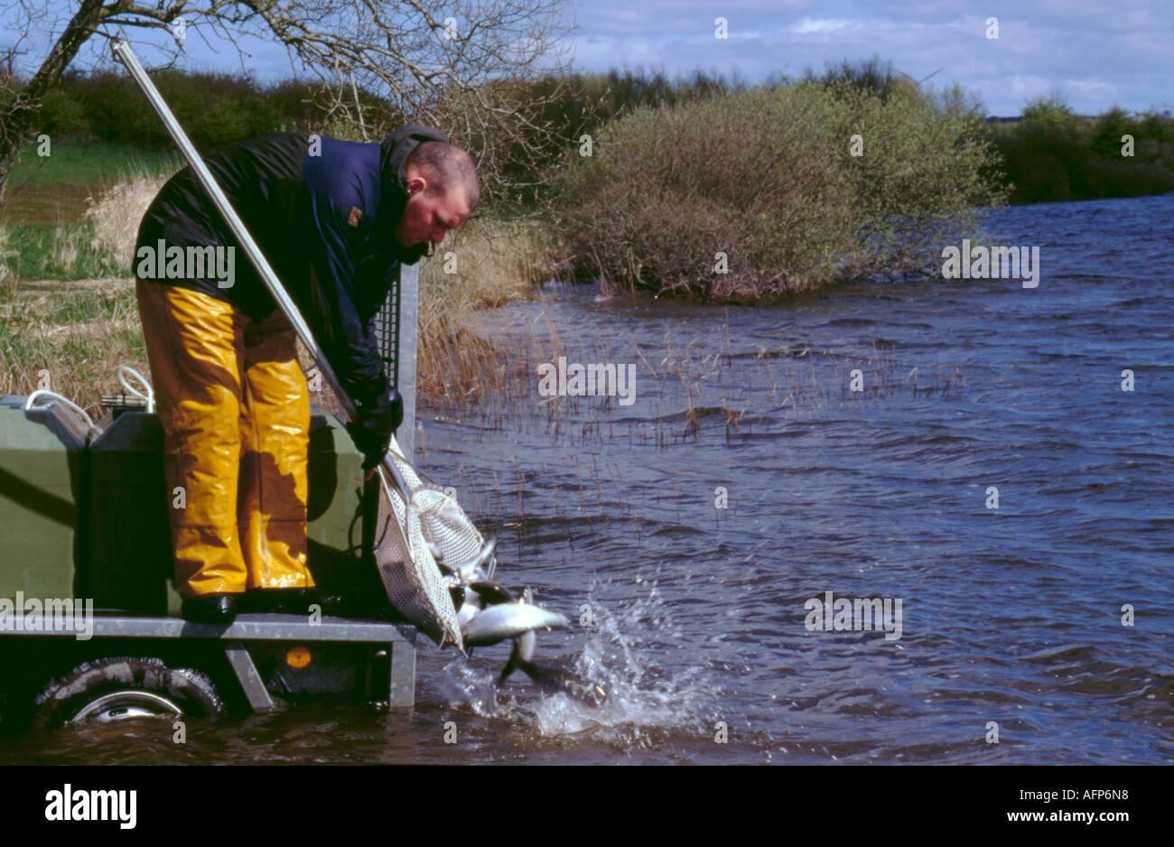 Nylon stocking stockfotos nylon stocking bilder alamy for Teich mit fischen