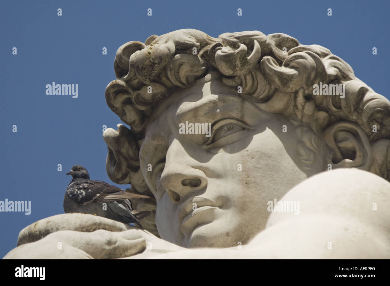 renaissance sculpture stockfotos renaissance sculpture bilder alamy. Black Bedroom Furniture Sets. Home Design Ideas