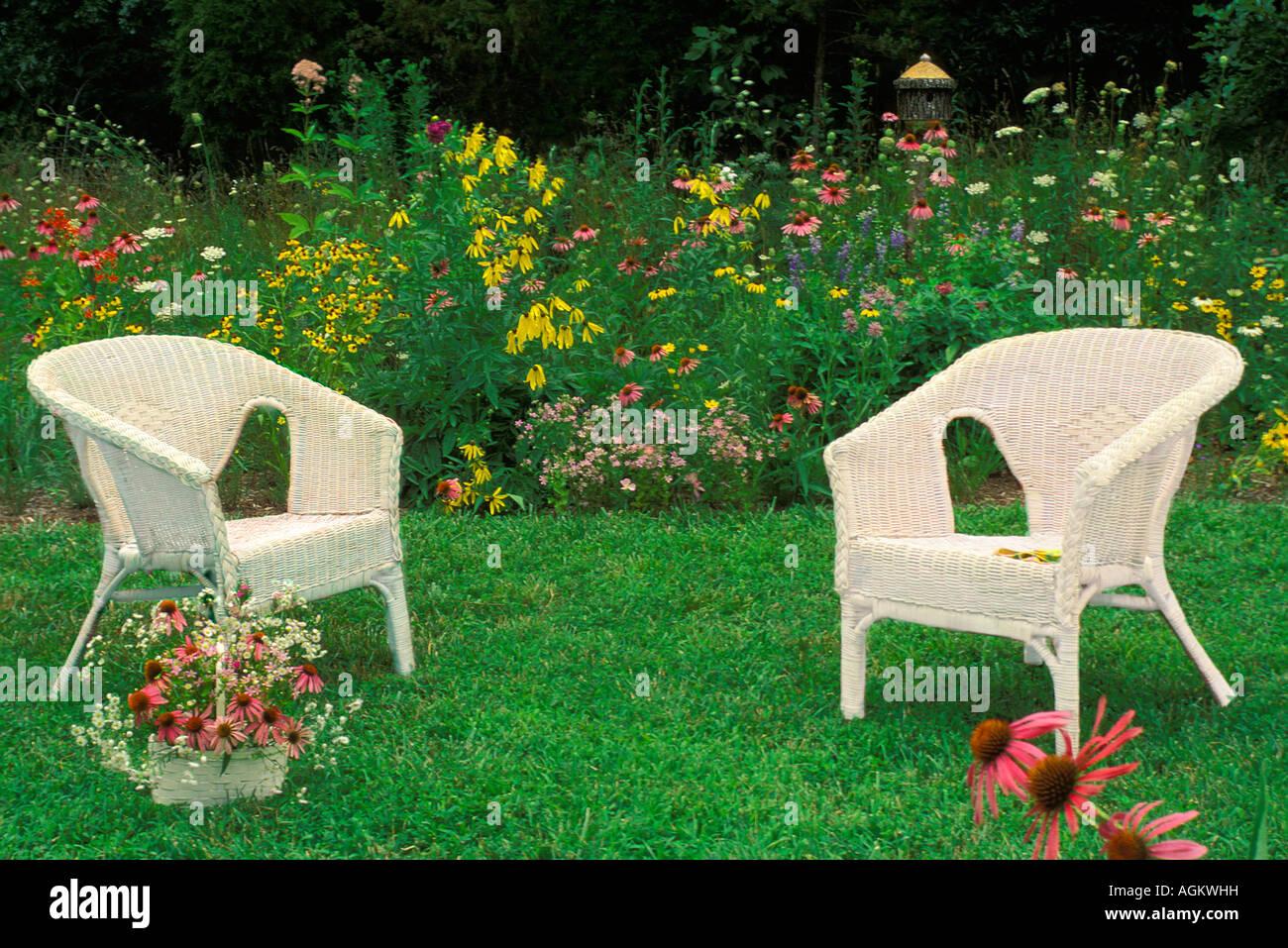 zwei wei e korbsessel vor einheimischen wildblumen garten mit bunten vielfalt stockfoto bild. Black Bedroom Furniture Sets. Home Design Ideas