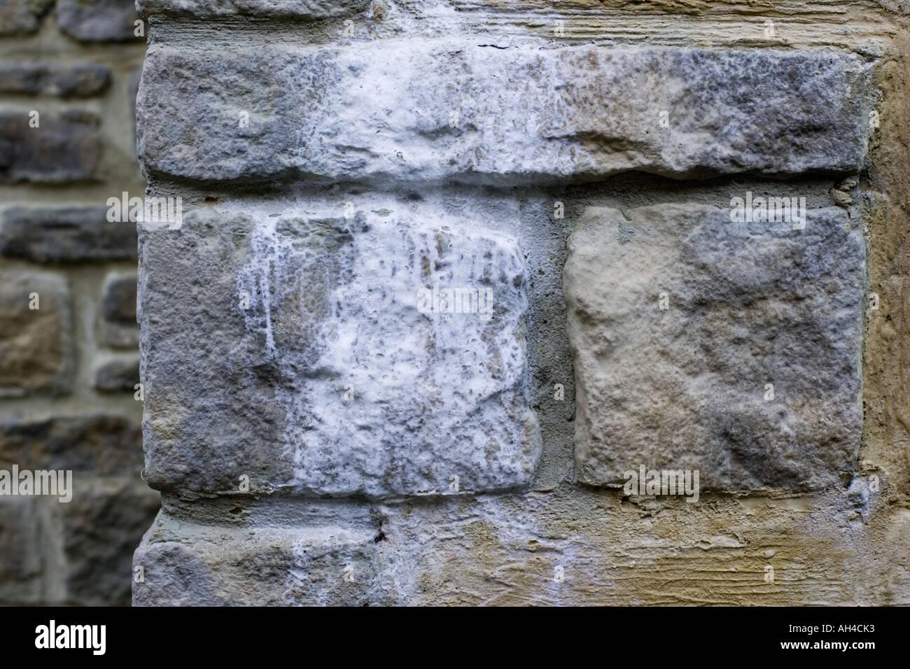 Beliebt Ausblühungen Flecken auf Mauerwerk hergestellt durch Salze aus JT98