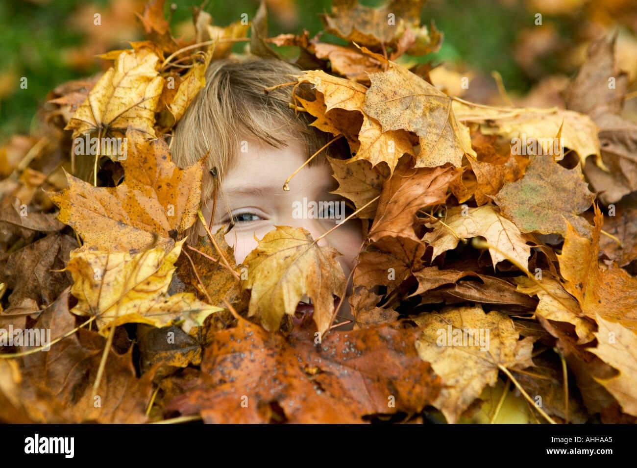 Mädchen 5 spähen durch einen Stapel Blätter in die sie begraben liegt, spielen verstecken und suchen Stockfoto