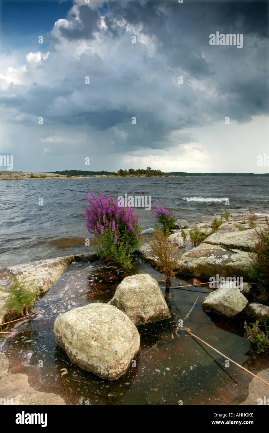 Sommer Tag Moskjaera im See Vansjø, råde Kommune, Østfold fylke, Norwegen. Stockbild