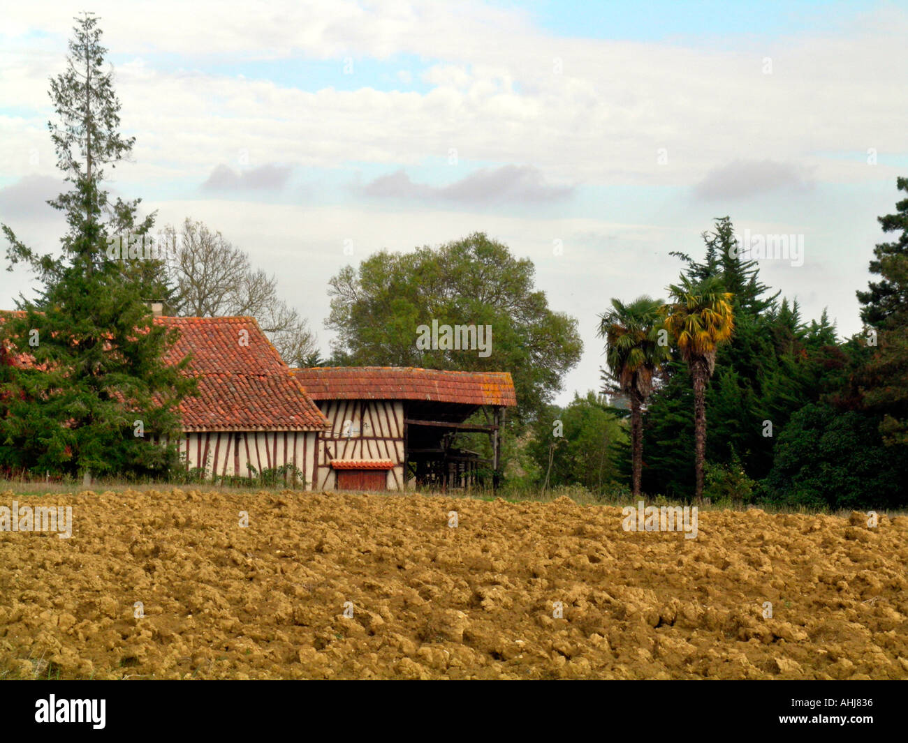 alte Rahmen Schuppen auf einem Feld in der Gascogne, Frankreich ...