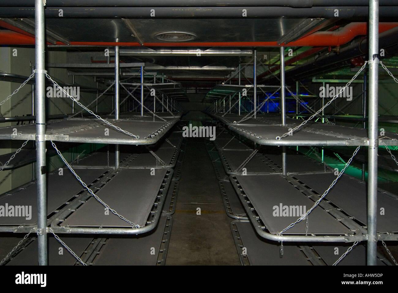 Etagenbetten Metall : Horizontale ansicht der reihen von metall etagenbetten in einem