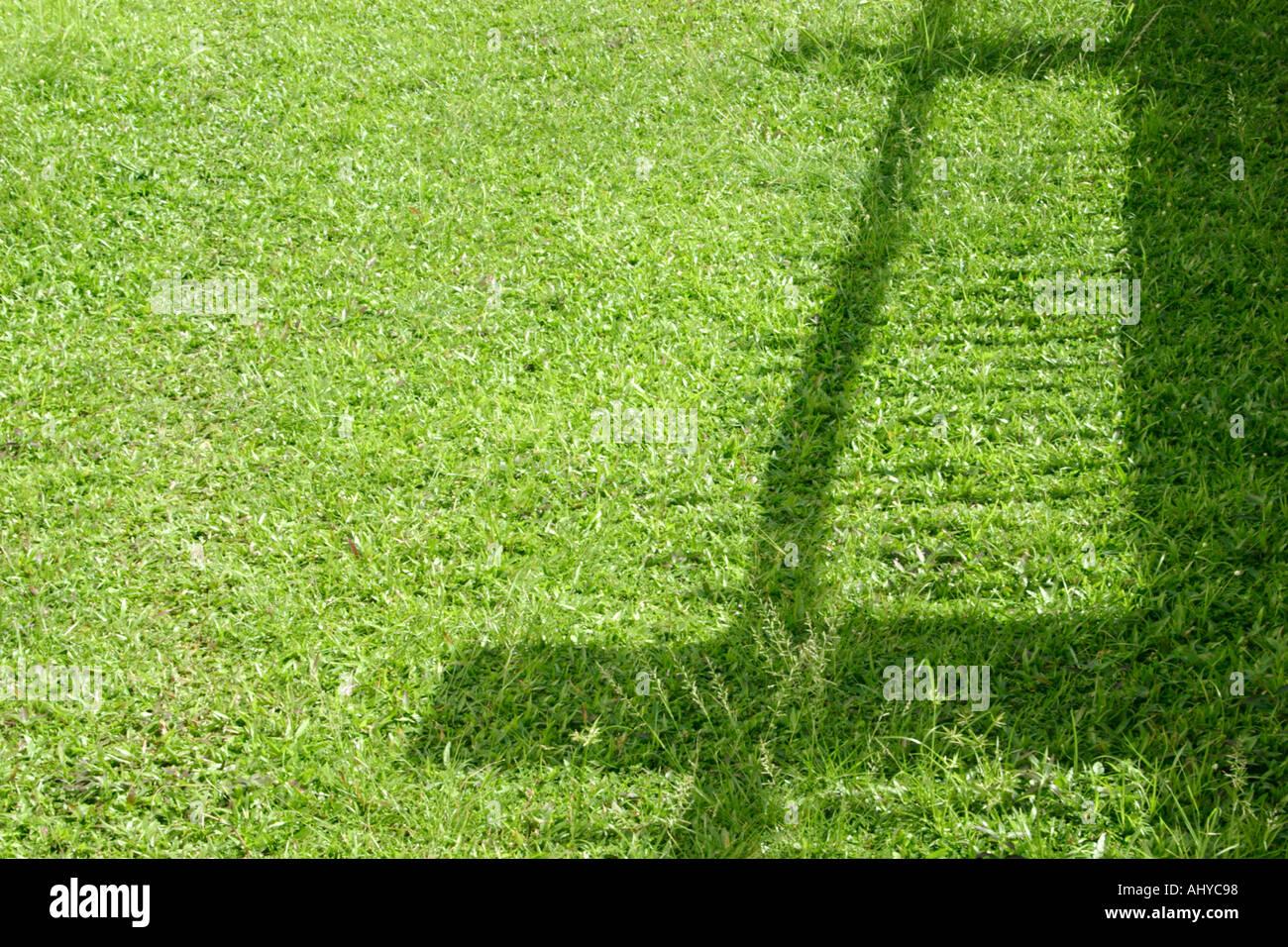 Zaun Schatten auf Grass Greener pastures Grass ist grüner auf der