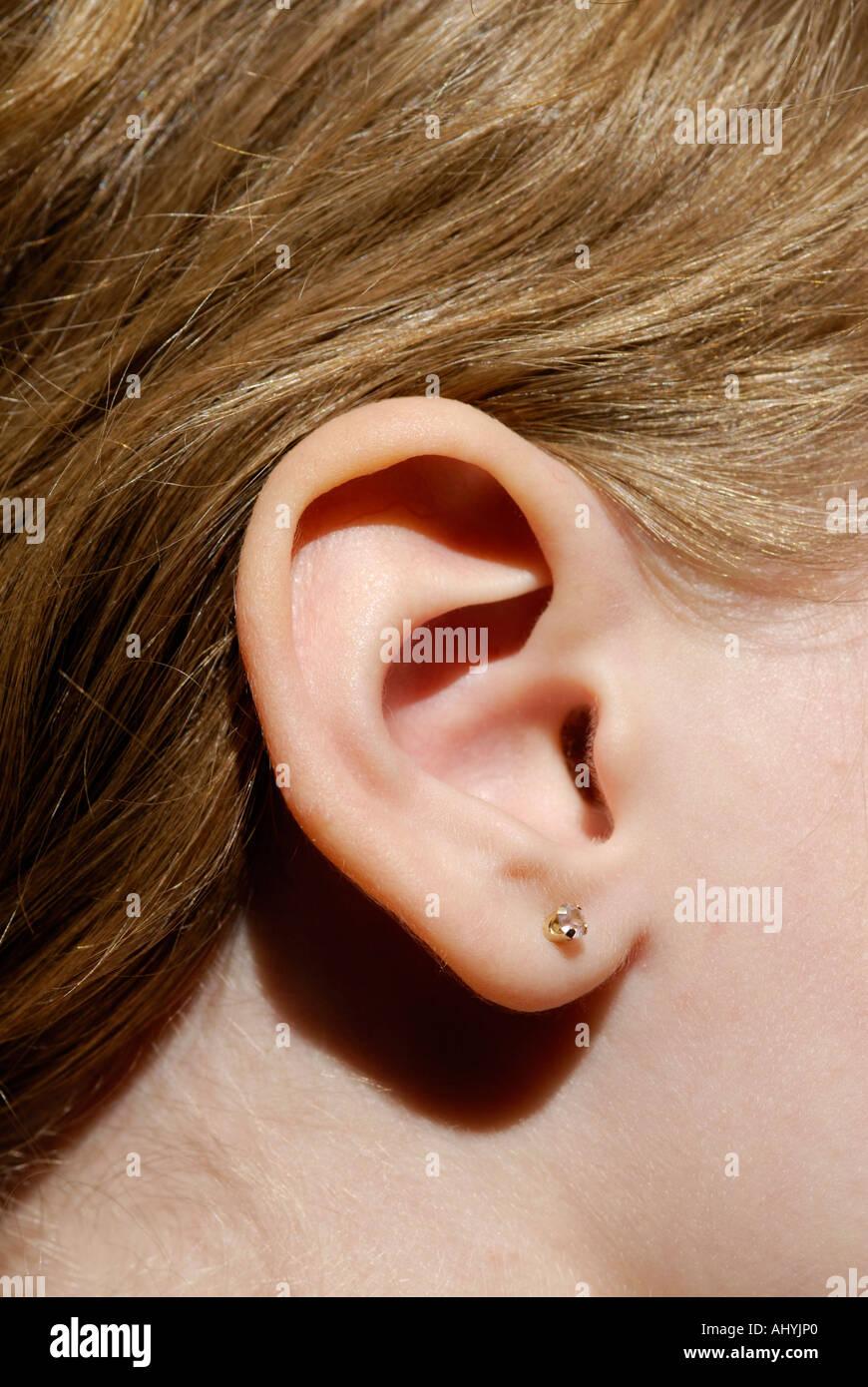 Menschliches Ohr hautnah. Äußere Ohr, Ohrmuschel Stockbild