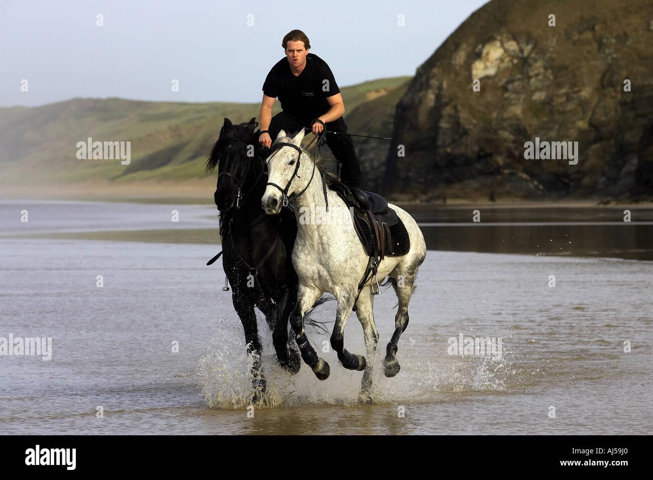 Reiter reitet zwei Pferde Throught das Meer Stockfoto