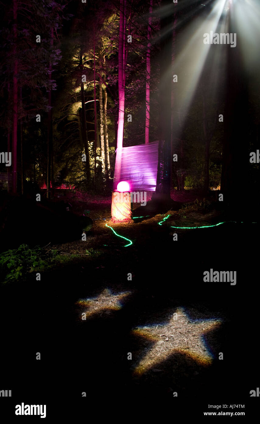 Enchanted Forest Beleuchtung Display, Perthshire, Schottland Stockbild