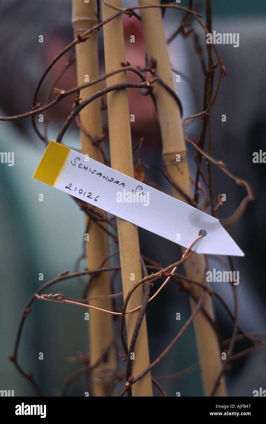 Atemberaubend Verwendet Für Kupferdraht Ideen - Der Schaltplan ...