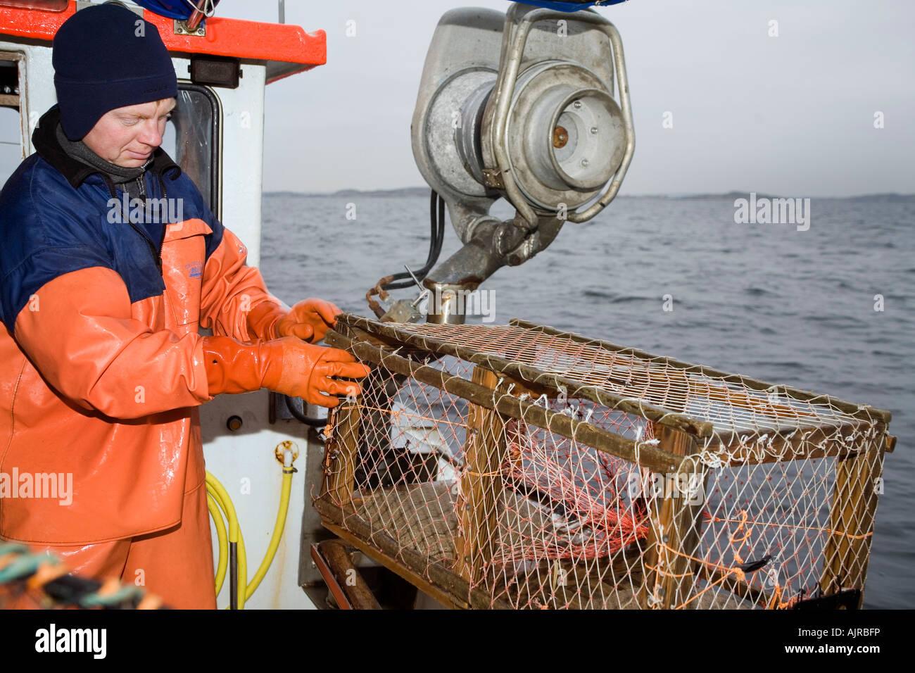 Nordischen Fischer auf einem Boot bereitet ein Draht Hummerfalle ...