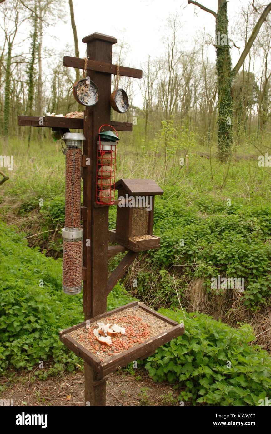 vogel-futterstation im naturschutzgebiet stockfoto, bild: 4838859