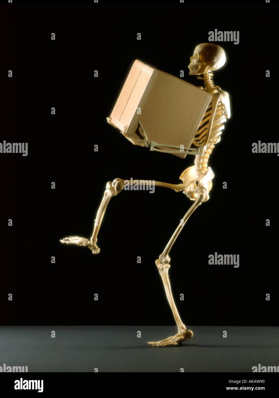 Skelett heben große Kiste auf schwarzem Hintergrund Stockbild