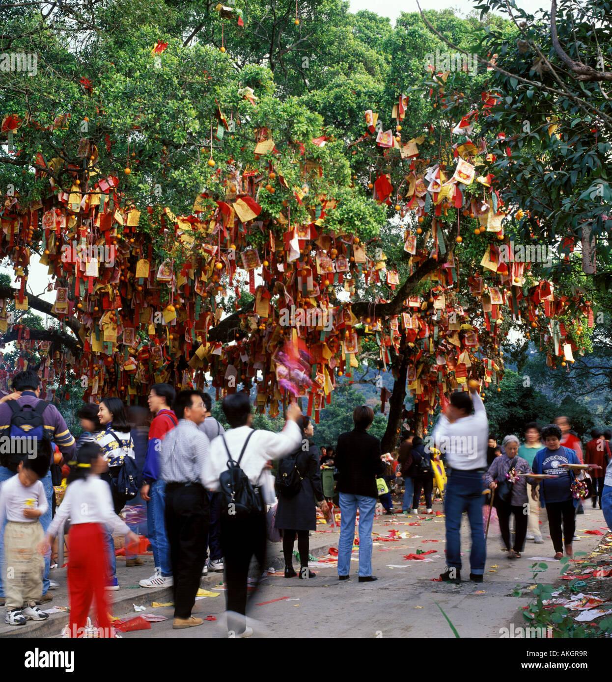 Menschen beten unter Ich wünsche Baum in Tai Po, Hong Kong während ...