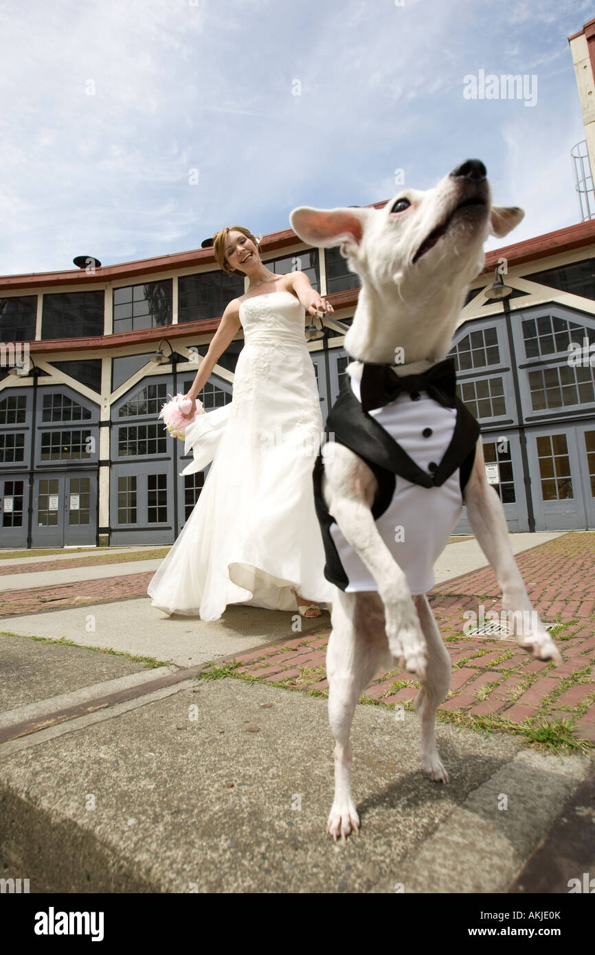 eine schöne Braut im weißen Hochzeitskleid halten ihren Blumenstrauß ...