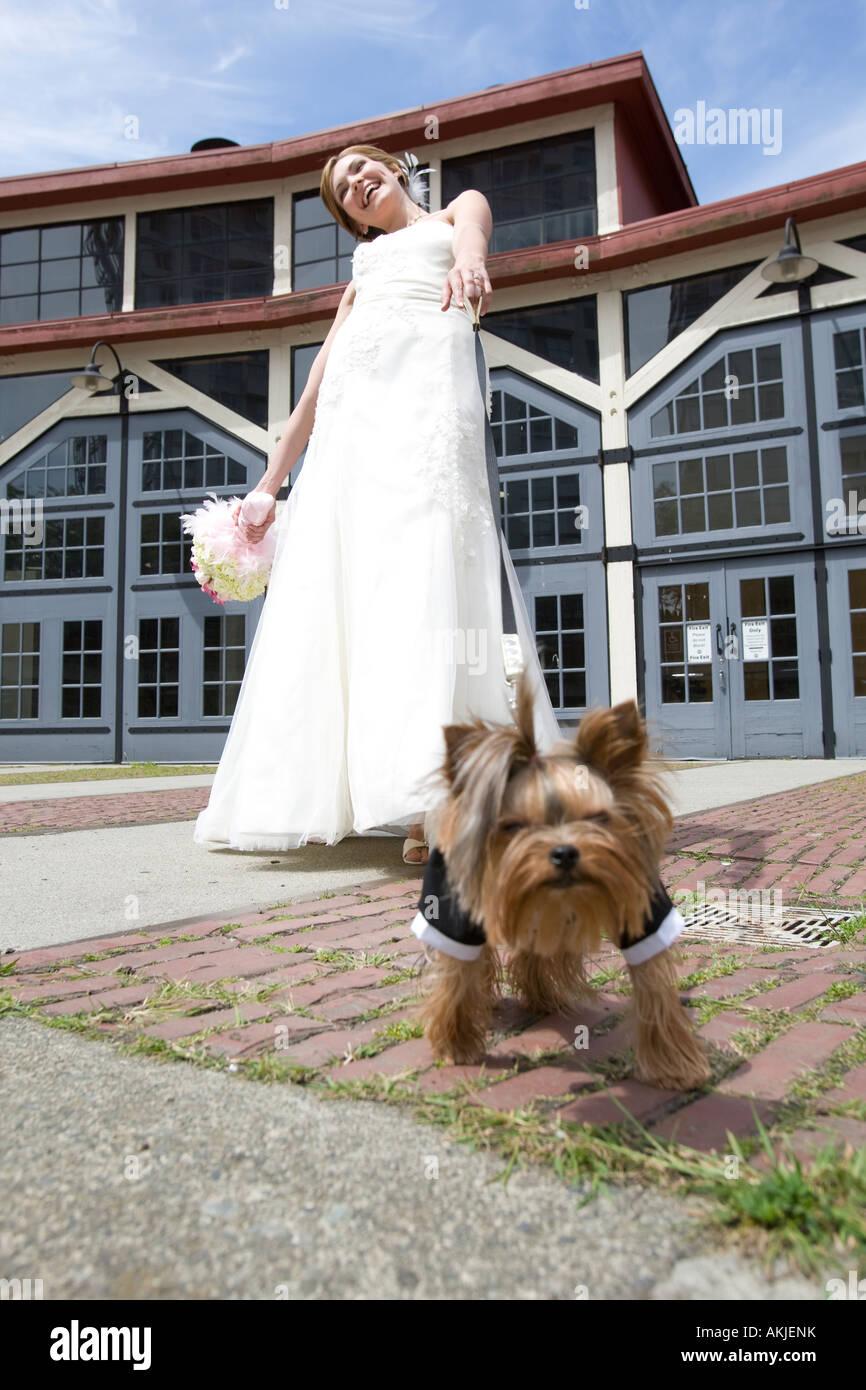 Nett Hund Im Hochzeitskleid Bilder - Brautkleider Ideen - cashingy.info