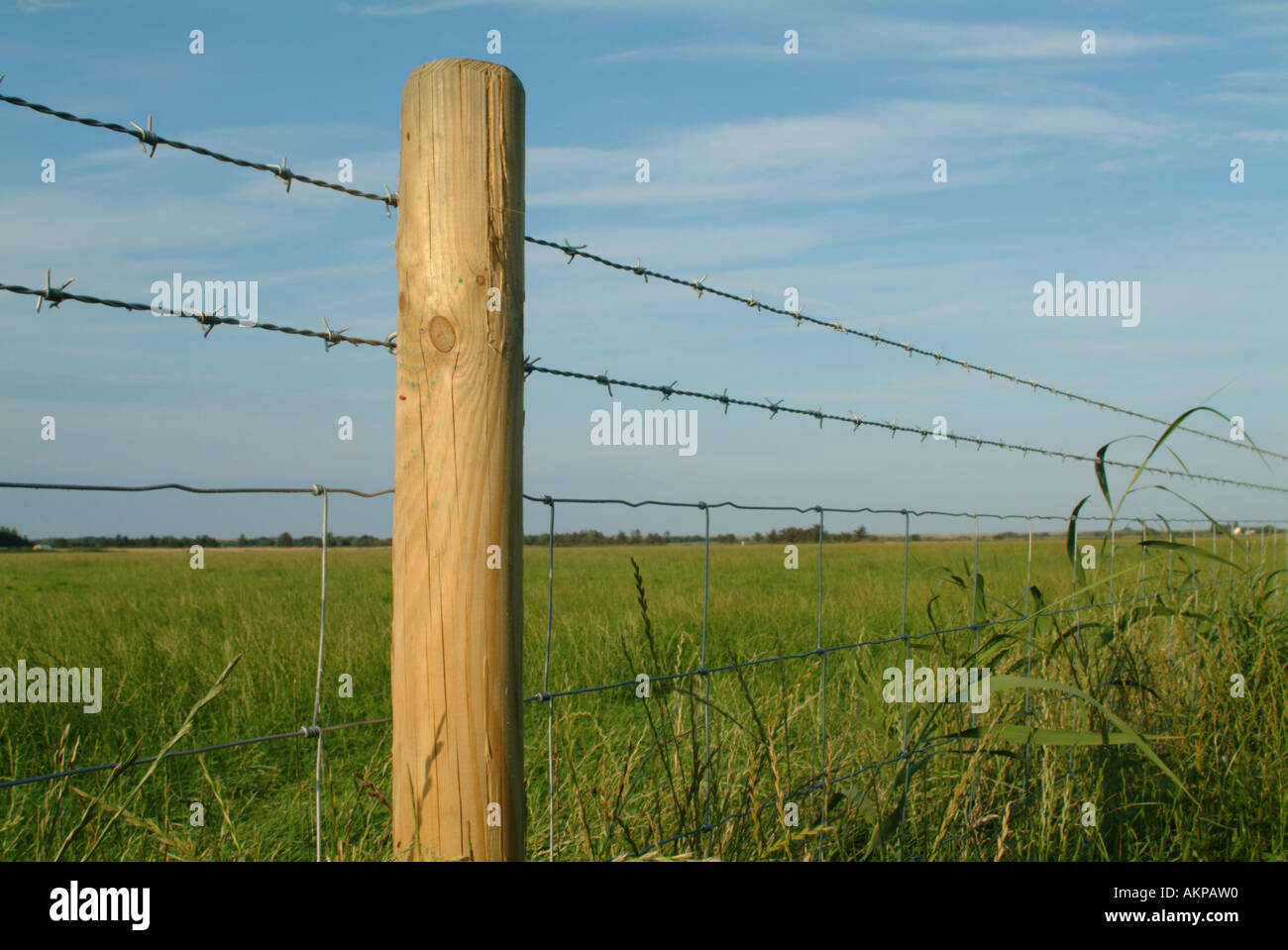 Ziemlich Vieh Drahtzaun Bilder - Der Schaltplan - raydavisrealtor.info