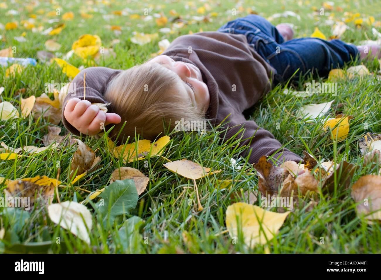 junge liegend auf dem rasen im bett bl tter tr umen stockfoto bild 15087765 alamy. Black Bedroom Furniture Sets. Home Design Ideas