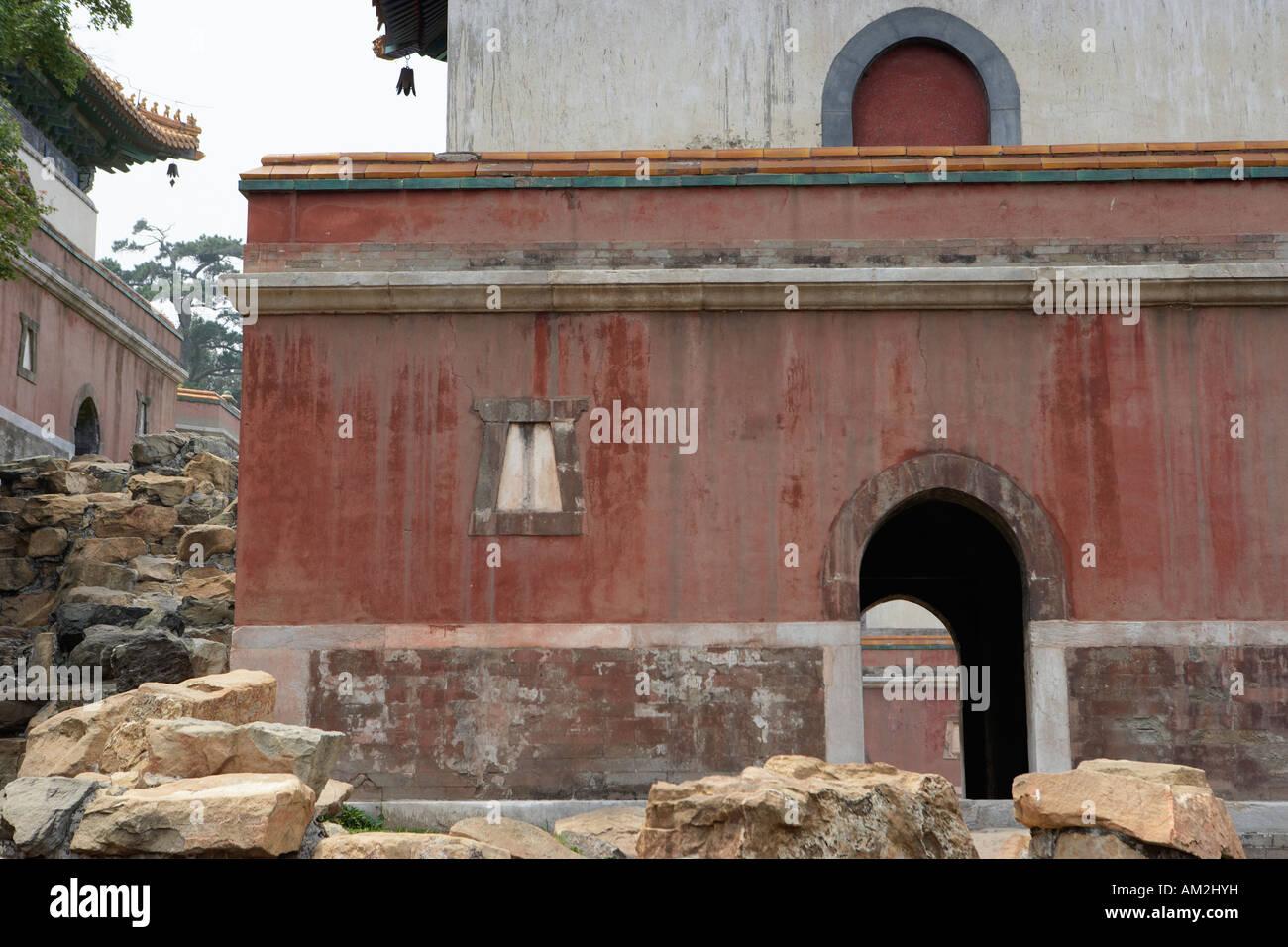 Chinese Pine Stockfotos & Chinese Pine Bilder - Alamy
