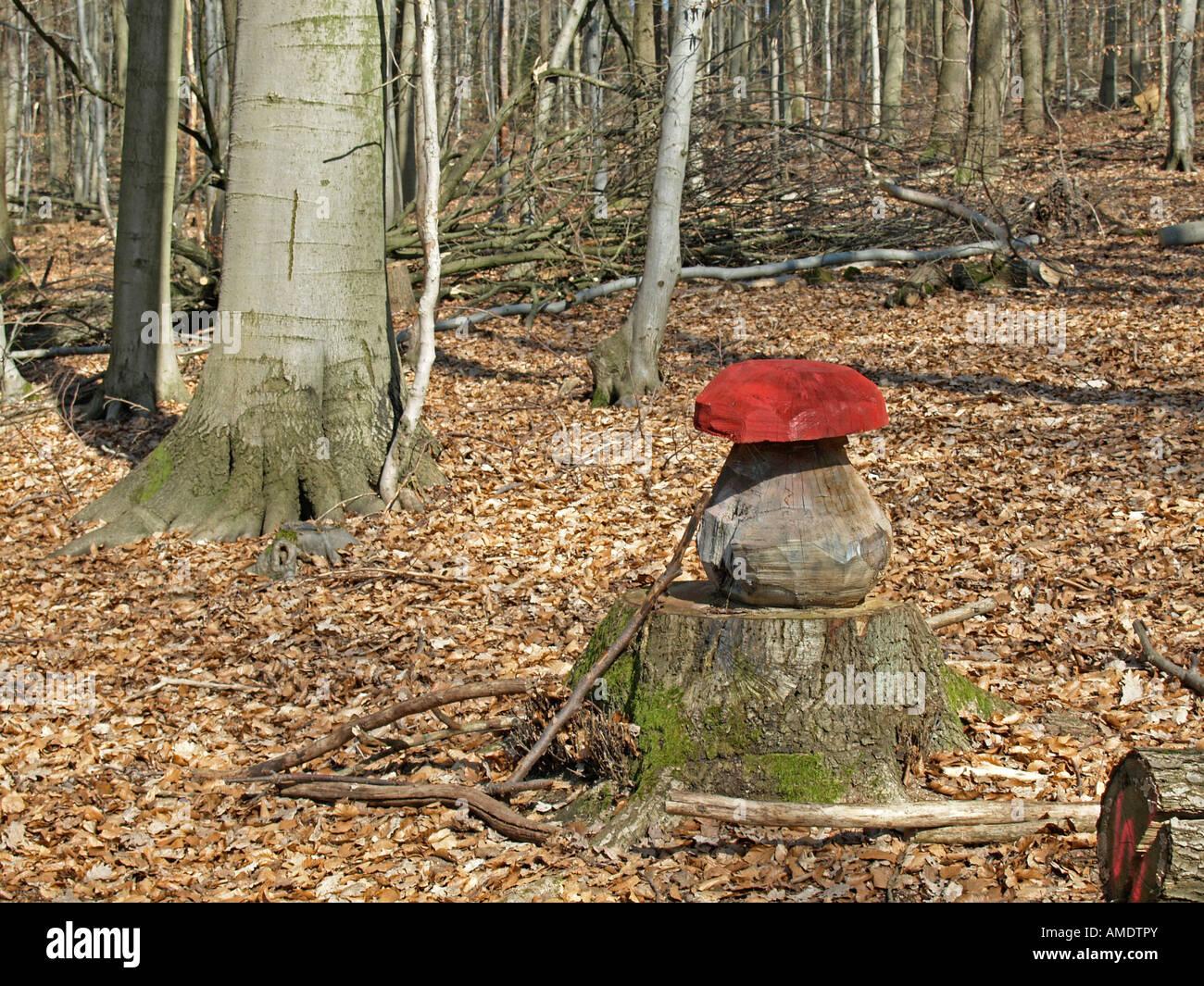 Lustige Bilder Wald