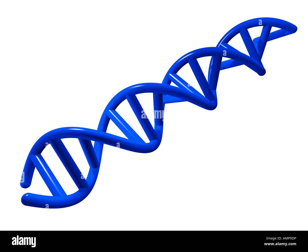 Blauen DNA-Helix. Stockbild