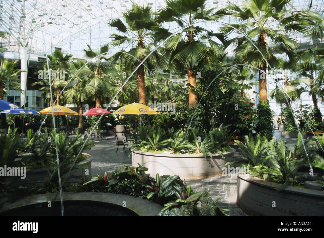 Navy pier palmen chicago illinois kristallgarten indoor garten brunnen schie en wasser b gen - Indoor garten ...