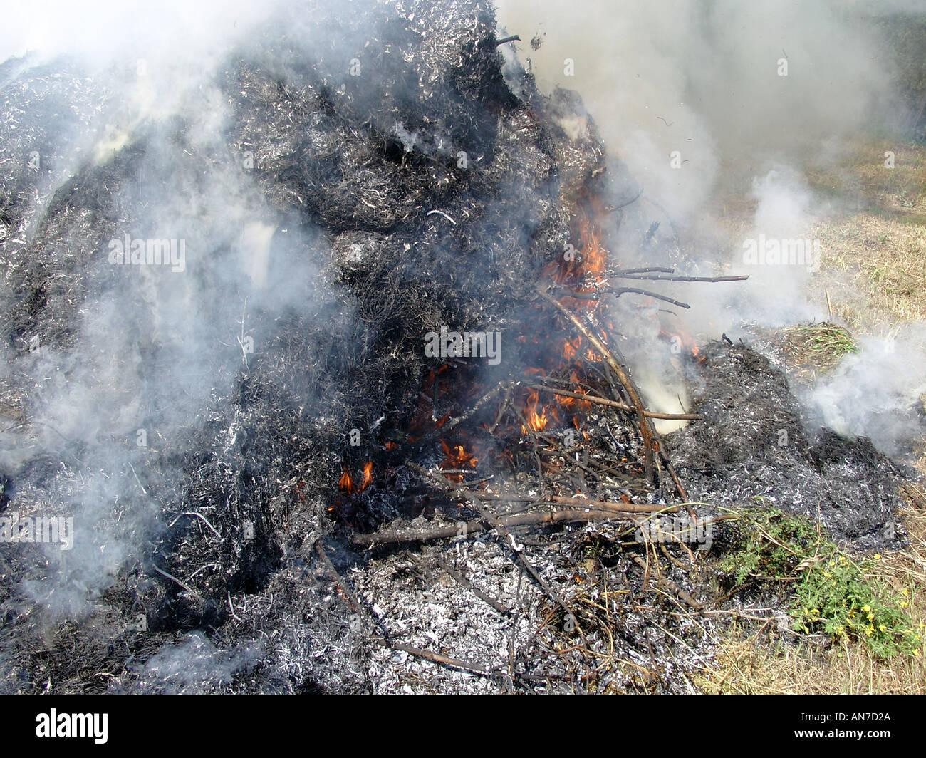 rauchigen garten feuer fire flamme flammen flammenden feuer brennen
