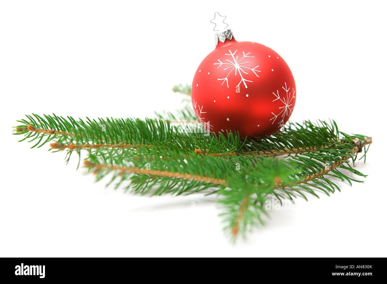 Weihnachtsbaum Ast.Weihnachtsbaum Kugel Auf Einem Grünen Tannen Ast Weißen Hintergrund