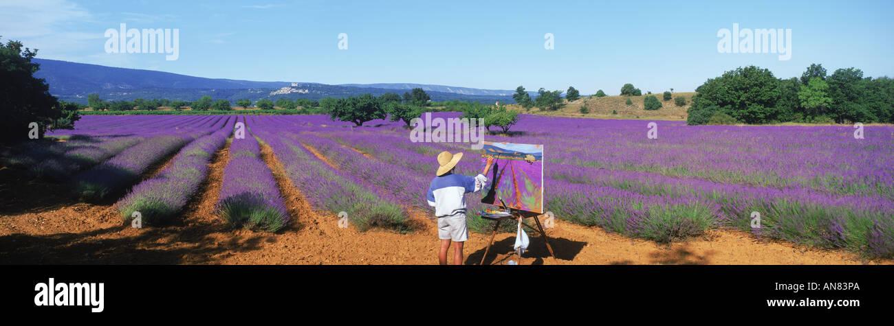 Panorama-Aufnahme der Künstlerin Malerei Feld von Lavendel in der Provence Stockbild