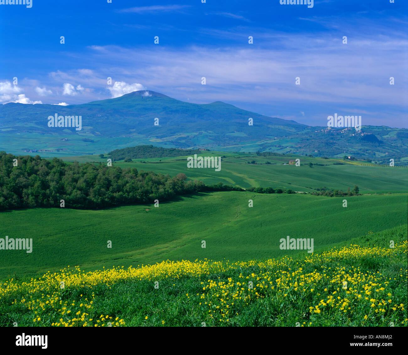 Frühling in der Toskana, Italien Stockfoto