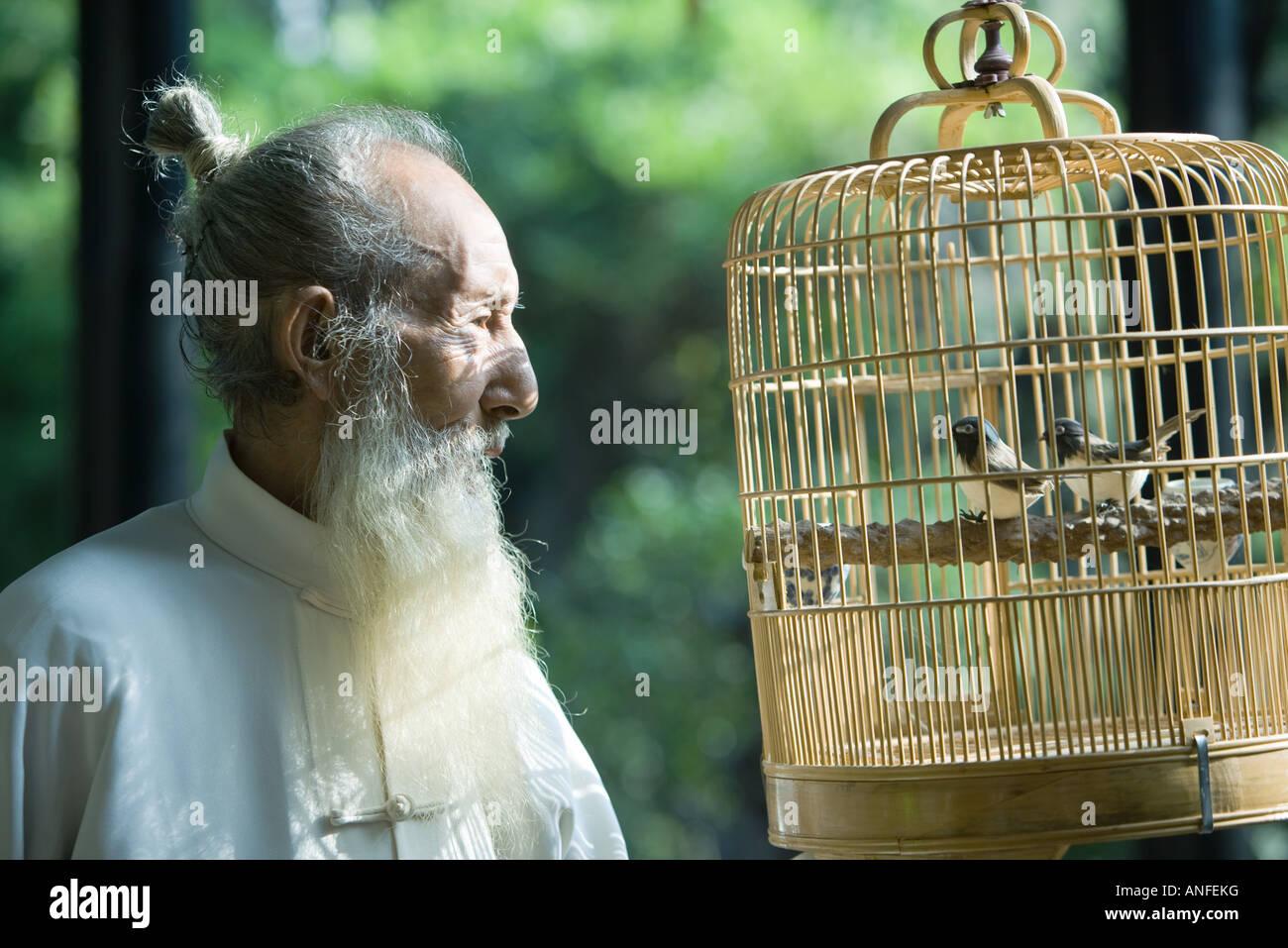 Älterer Mann tragen traditionellen chinesischen Kleidung, Blick auf Vögel im Käfig Stockbild