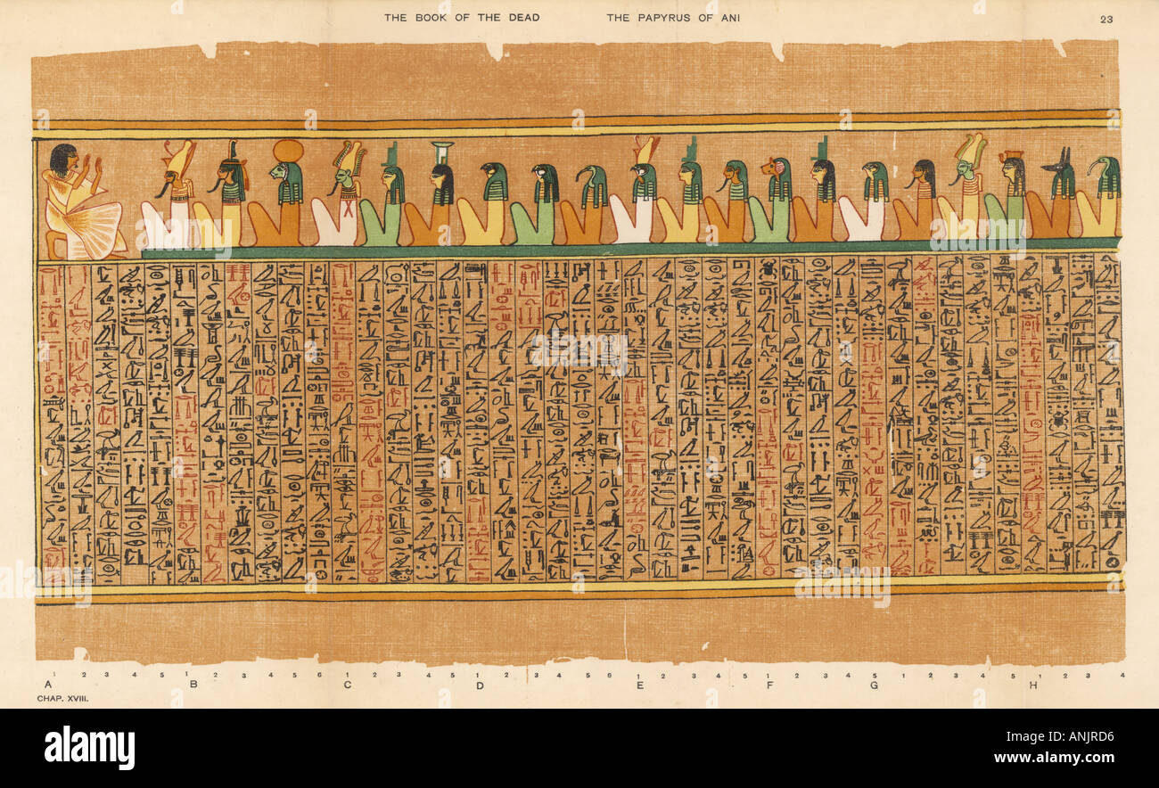 book of the dead of ani