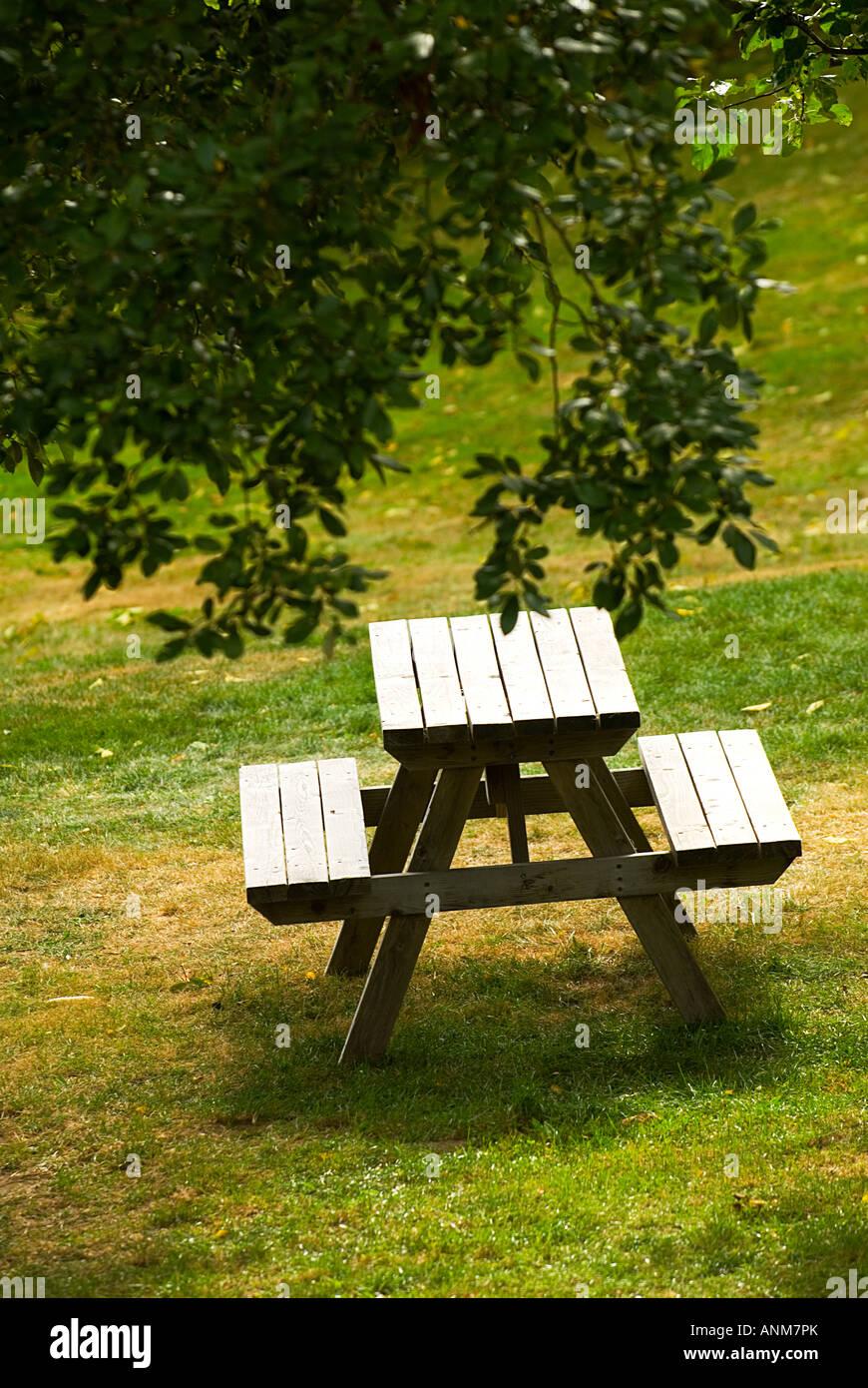 picknick tisch auf dem gr nen rasen unter baum stockfoto bild 15557178 alamy. Black Bedroom Furniture Sets. Home Design Ideas