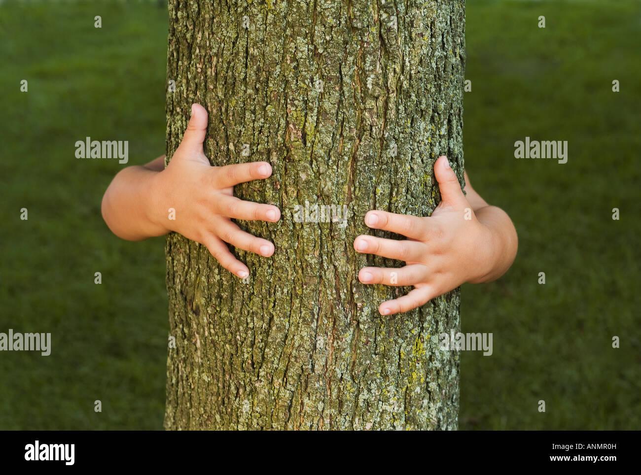 Person umarmt Baum Stockbild