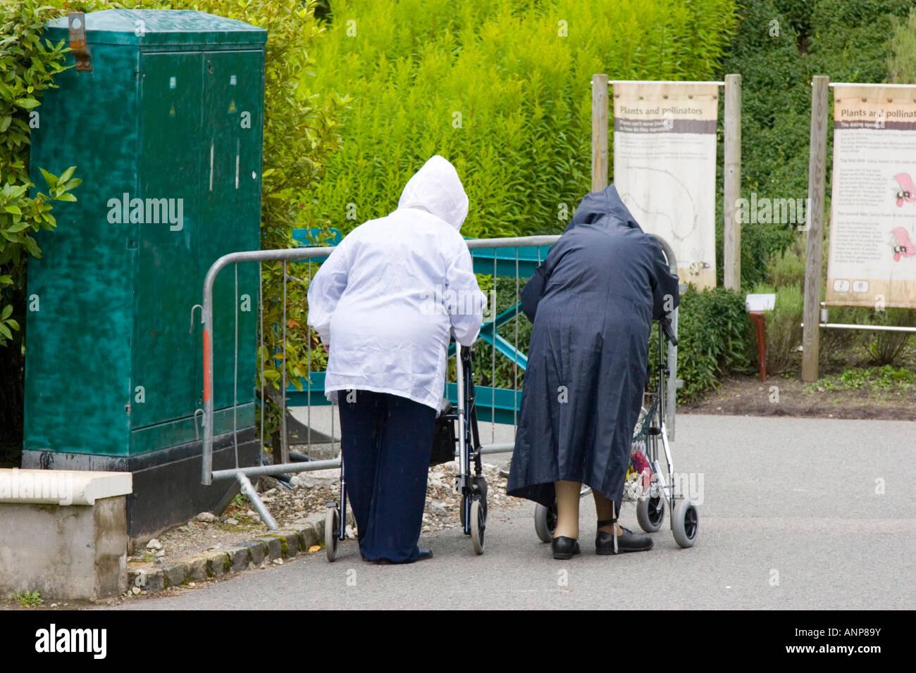 Zwei alte Damen gehen mit Hilfe von Zimmer Frames im strömenden ...