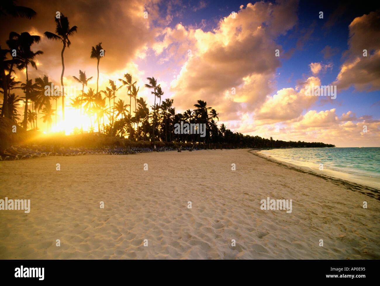 Palmen sind von der untergehenden Sonne in einem bunten Himmel Strand Punta Cana Dominikanische Republik Silhouette. Stockbild
