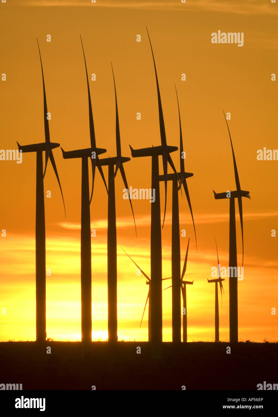 Windkraftanlagen auf Texas-Windpark bei Sonnenuntergang. Stockbild
