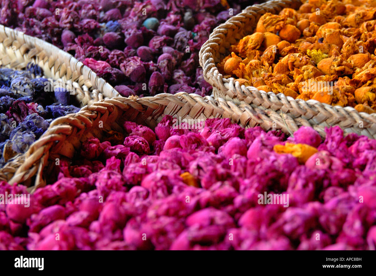 Körbe mit getrockneten Rosenknospen Marrakesch souk Stockbild