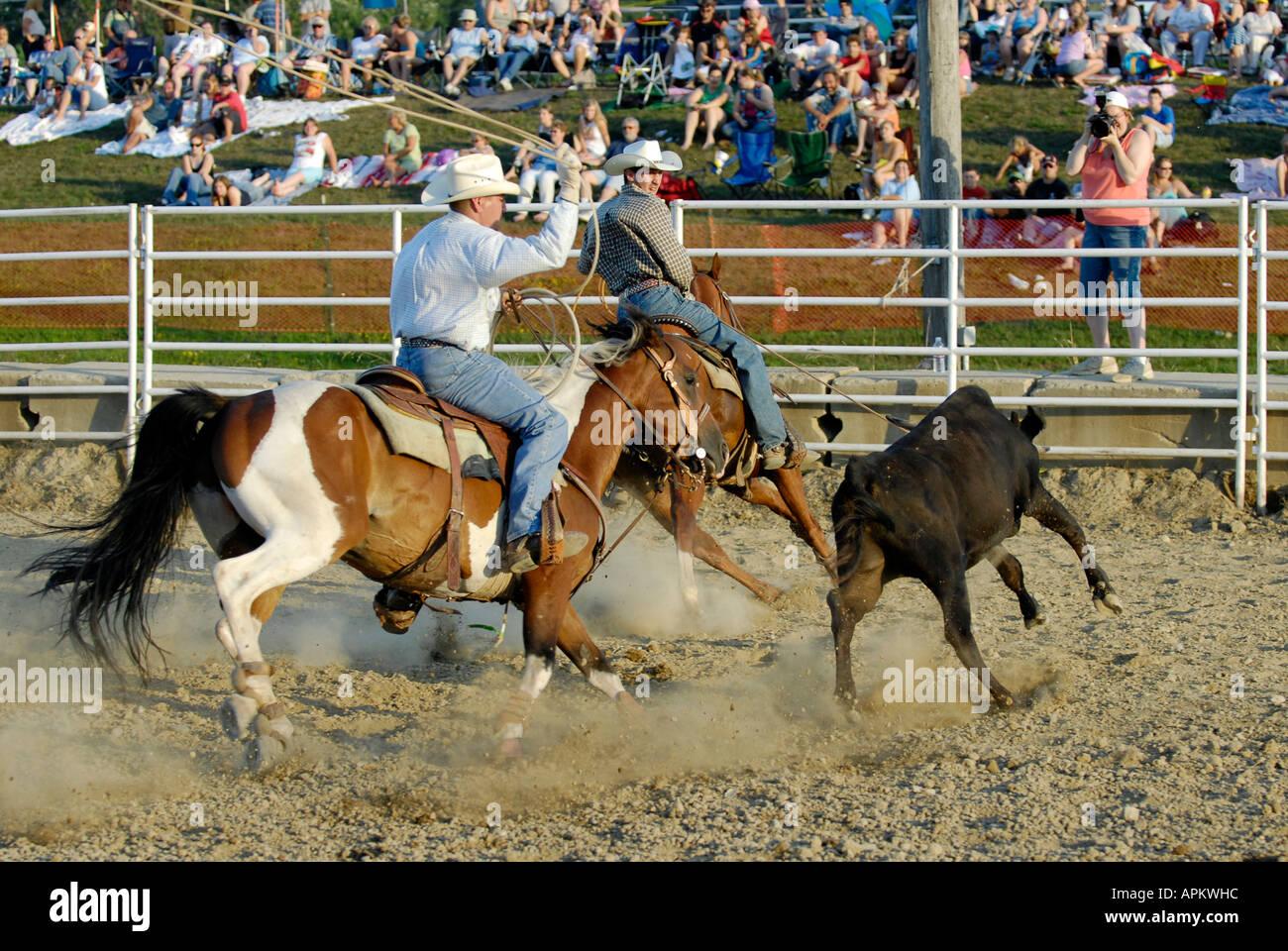 Cowboys teilnehmen im Rodeo Kalb roping event Stockbild