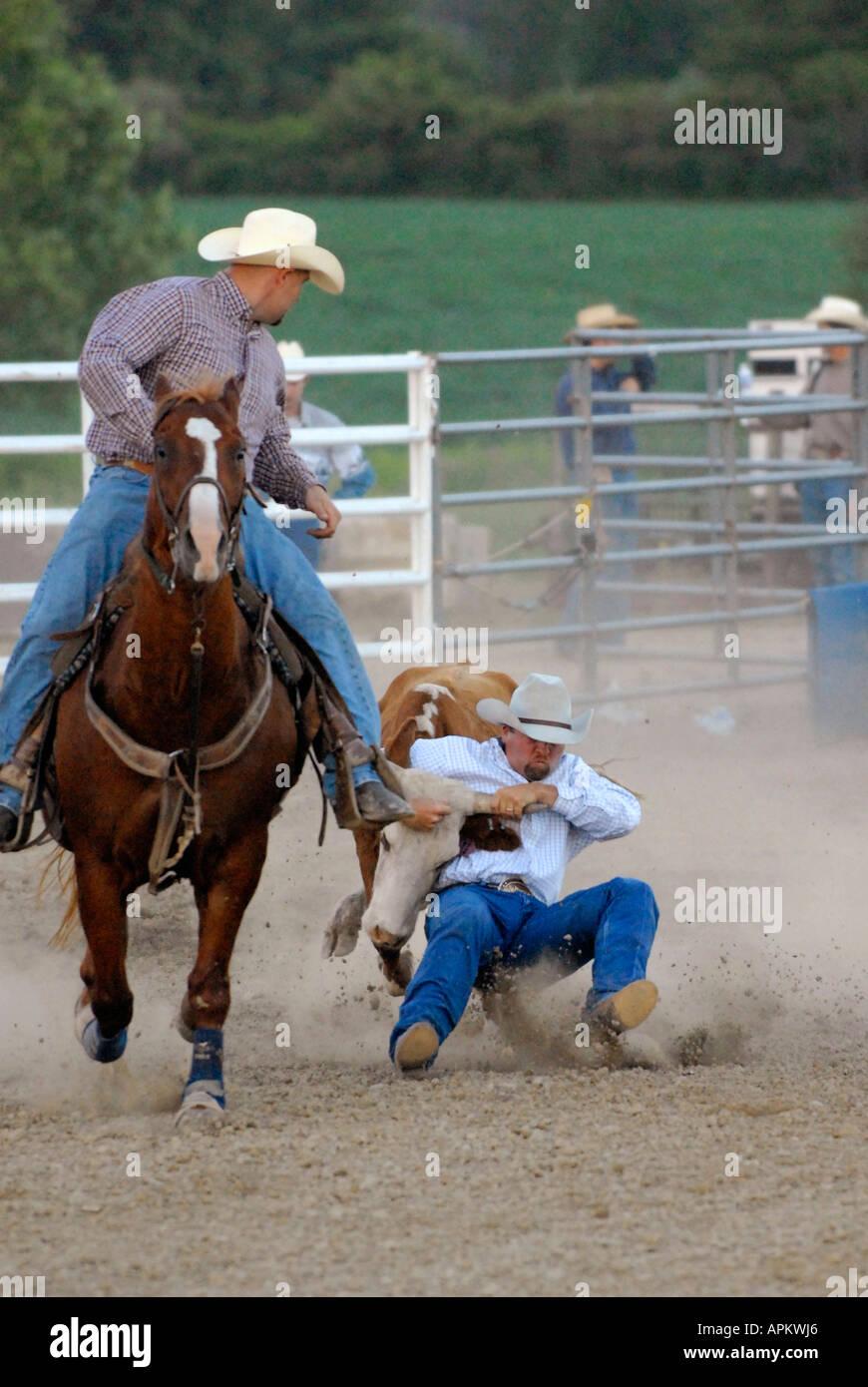 Cowboys teilnehmen im Rodeo Bull Doggy Style event Stockbild