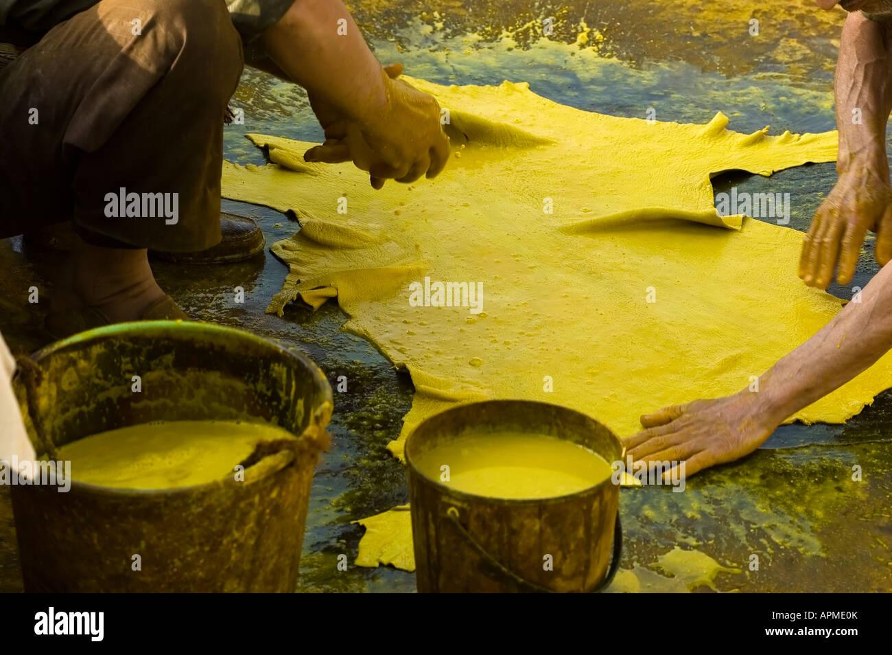 Wunderbar Natürliche Gelbe Färbung Zeitgenössisch - Malvorlagen Von ...