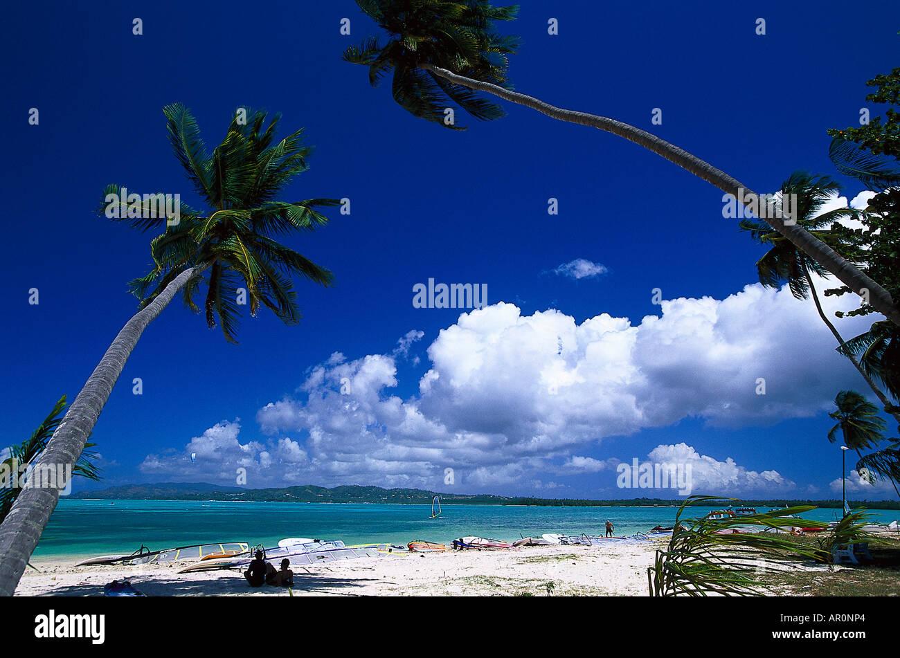Palmenstrand Kokospalmen Windsurfen Pigeon Point Tobago West